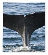 Whale Diving Fleece Blanket