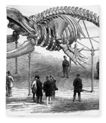 Whale Skeleton, 1866 Fleece Blanket