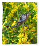 Wheel Bug  Fleece Blanket