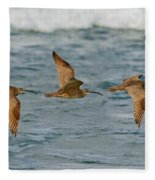 Whimbrel Trio In Flight Fleece Blanket