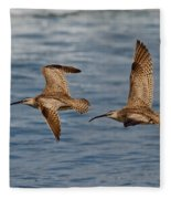 Whimbrels Flying Close Fleece Blanket