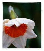 White And Orange Daffodil Fleece Blanket