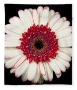 White And Red Gerbera Daisy Fleece Blanket