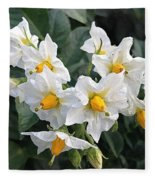 Garden Blossoms White And Yellow Garden Blossoms Fleece Blanket
