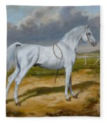 White Arabian Stallion Fleece Blanket