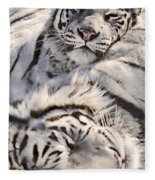 White Bengal Tigers, Forestry Farm Fleece Blanket