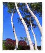 White Birch Blue Sky Fleece Blanket