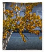 White Birch Tree In Autumn Along The Shore Of Crystal Lake Fleece Blanket