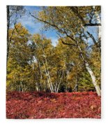 White Birches Of Fall Fleece Blanket