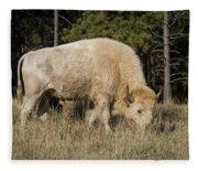 White Bison Symbol Of Hope And Renewal Fleece Blanket