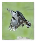 White-breasted Nuthatch Flying With Food Fleece Blanket