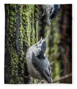 White Breasted Nuthatchs Fleece Blanket