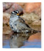 White-crowned Sparrow Bathing Fleece Blanket