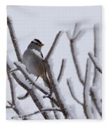 White Crowned Sparrow Fleece Blanket