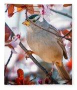 White-crowned Sparrow Fleece Blanket
