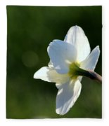 White Daffodil Rear Profile Fleece Blanket