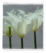 White Early Dawn Tulips White Bordered Fleece Blanket