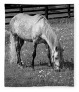 White Horse In A Pasture Among Daisy Flowers Fleece Blanket