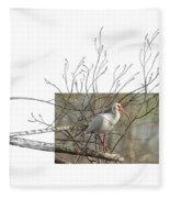 White Ibis Fleece Blanket