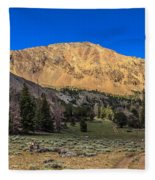 White Knob Mountain Peak Fleece Blanket