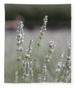 White Lavender Fleece Blanket