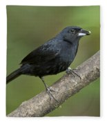White-lined Tanager Fleece Blanket
