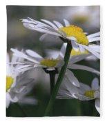 White Marguerite Fleece Blanket