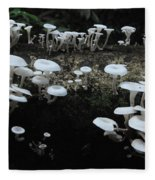 White Mushrooms Amazon Jungle Brazil 1 Fleece Blanket