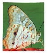 White Peacock Butterfly Anartia Fleece Blanket