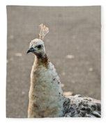 White Peacock Fleece Blanket