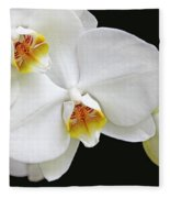 White Phalaenopsis Orchid Flowers Fleece Blanket