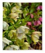 White/pink Lenten Roses Fleece Blanket
