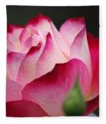 White Red Rose 01 Fleece Blanket