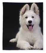 White Swiss Shepherd Dog Fleece Blanket