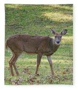 White Tail Deer Fleece Blanket