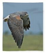 White-tailed Hawk Fleece Blanket