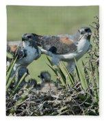 White-tailed Hawk Family Fleece Blanket