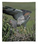 White-tailed Hawks At Nest Fleece Blanket