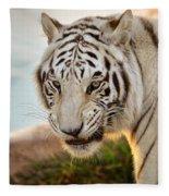 White Tiger At Sunrise Fleece Blanket