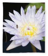 White Waterlily With Fly...   # Fleece Blanket