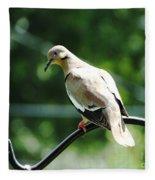 White Winged Dove Fleece Blanket