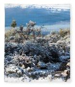 White Winter In The Desert Of Tucson Arizona Fleece Blanket
