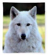 White Wolf Close Up Fleece Blanket