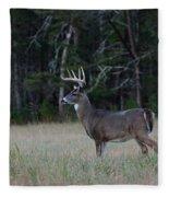Whitetail Buck 1 Fleece Blanket
