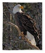 Who Ruffled The Feathers Fleece Blanket