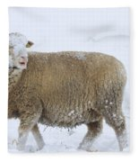 Who Threw The Snowball Fleece Blanket