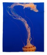 Who What Where When Purple Striped Jelly 1 Fleece Blanket