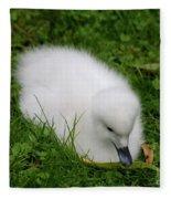 Whooper Swan Juvenile  Fleece Blanket