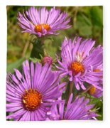 Wild Asters Fleece Blanket