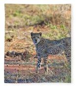 Wild Beauty... Fleece Blanket